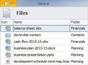 Creating a Business Plan: CentriQS Database and Files View